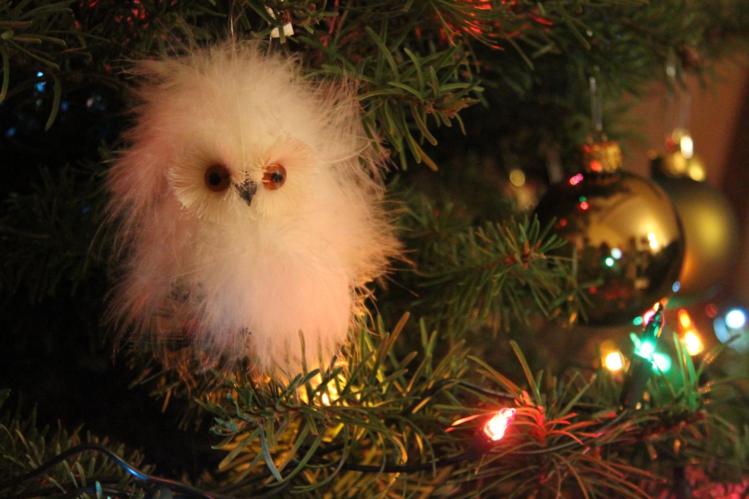 Bird ornaments on a Christmas tree