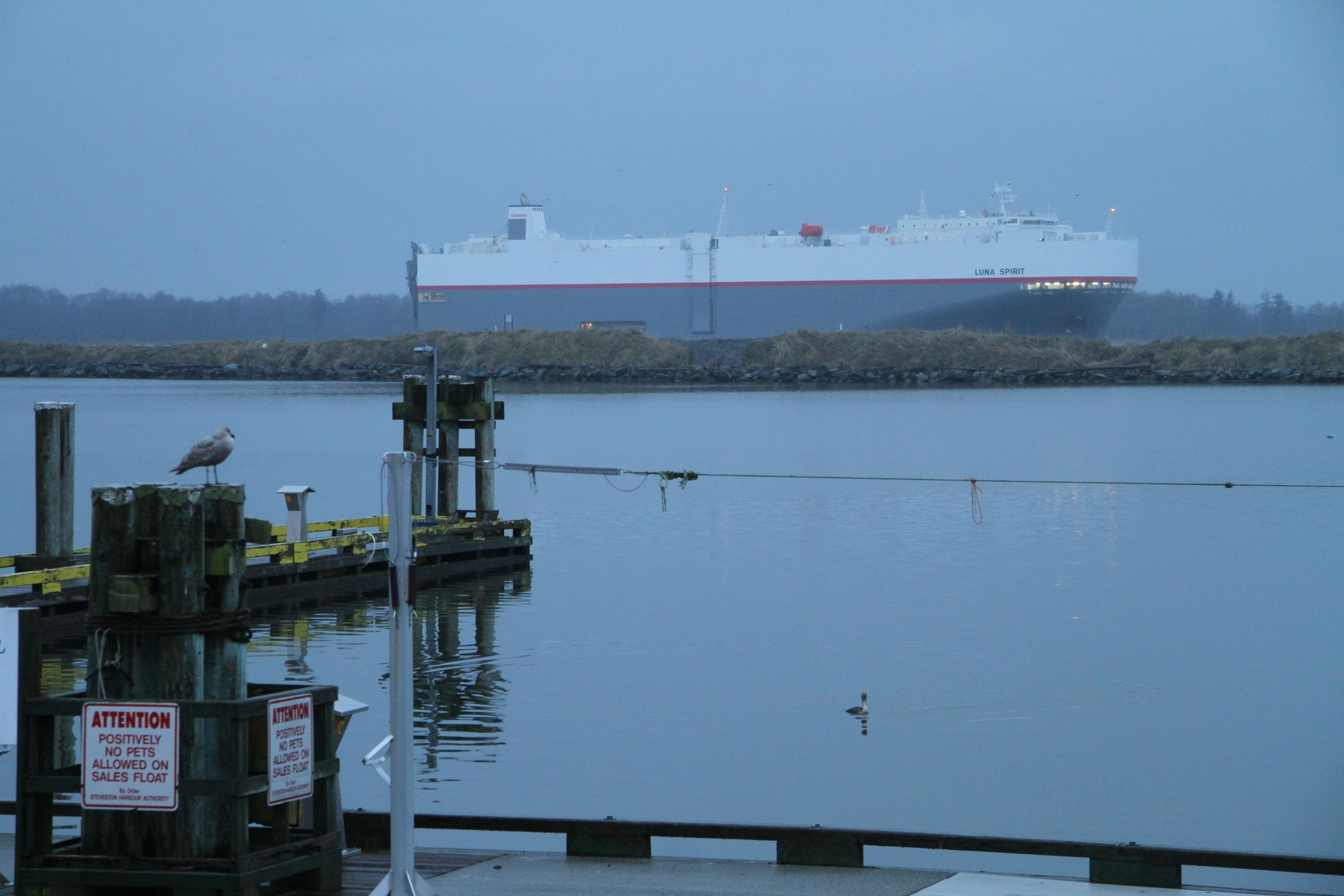 Freighter on the Fraser