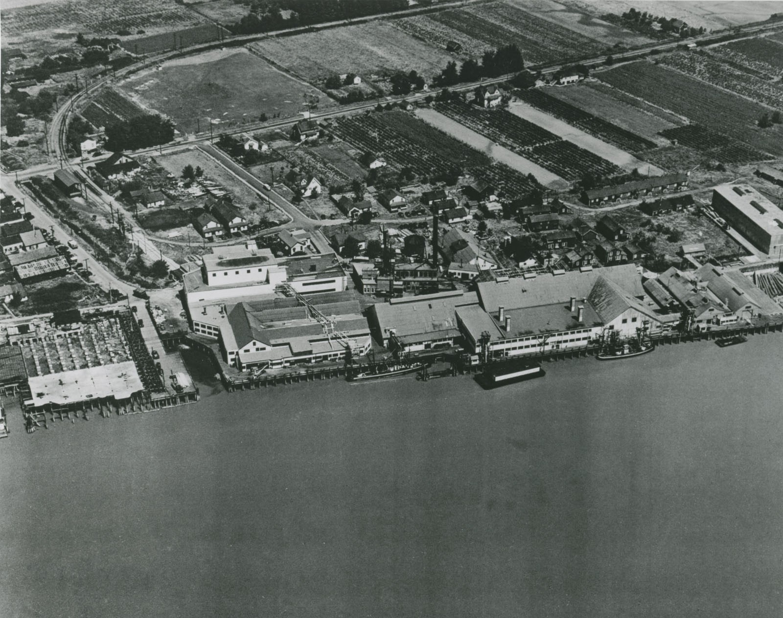 Aerial photo of the Imperial Cannery, Steveston - 1950