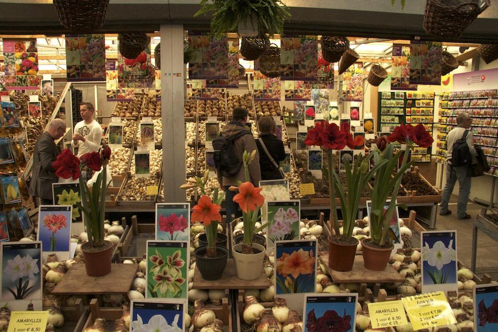 AmsterdamFlowerMarket